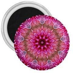 Flower Mandala Art Pink Abstract 3  Magnets by Celenk