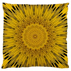 Pattern Petals Pipes Plants Large Flano Cushion Case (two Sides) by Celenk