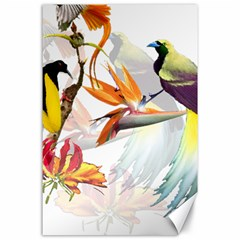Birds Of Paradise Canvas 24  X 36  by TKKdesignsCo