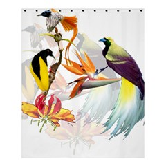 Birds Of Paradise Shower Curtain 60  X 72  (medium)  by TKKdesignsCo