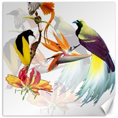Exotic Birds Of Paradise And Flowers Watercolor Canvas 20  X 20   by TKKdesignsCo