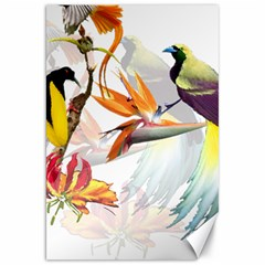 Exotic Birds Of Paradise And Flowers Watercolor Canvas 20  X 30   by TKKdesignsCo