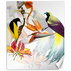 Exotic Birds Of Paradise And Flowers Watercolor Canvas 8  X 10  by TKKdesignsCo