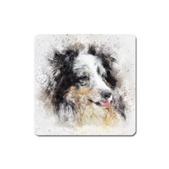Dog Shetland Pet Art Abstract Square Magnet by Celenk