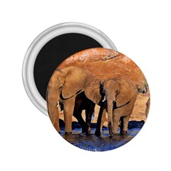 Elephants Animal Art Abstract 2 25  Magnets by Celenk