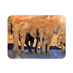 Elephants Animal Art Abstract Double Sided Flano Blanket (mini)  by Celenk