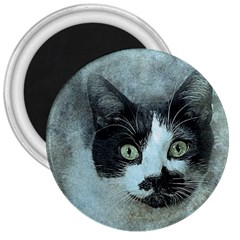Cat Pet Art Abstract Vintage 3  Magnets by Celenk