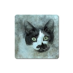 Cat Pet Art Abstract Vintage Square Magnet by Celenk