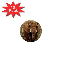 Elephant Animal Art Abstract 1  Mini Magnet (10 Pack)  by Celenk