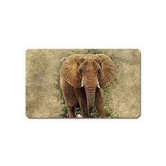 Elephant Animal Art Abstract Magnet (name Card) by Celenk
