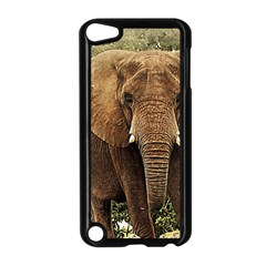 Elephant Animal Art Abstract Apple Ipod Touch 5 Case (black) by Celenk