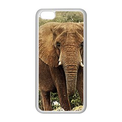 Elephant Animal Art Abstract Apple Iphone 5c Seamless Case (white) by Celenk