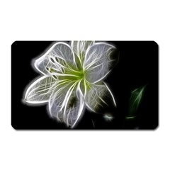 White Lily Flower Nature Beauty Magnet (rectangular) by Celenk
