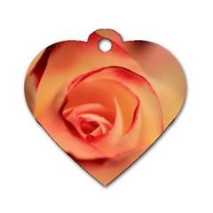 Rose Orange Rose Blossom Bloom Dog Tag Heart (two Sides)
