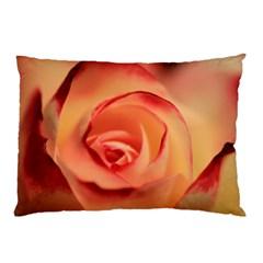 Rose Orange Rose Blossom Bloom Pillow Case by Celenk
