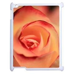 Rose Orange Rose Blossom Bloom Apple Ipad 2 Case (white) by Celenk