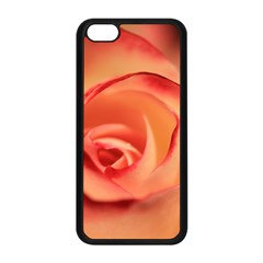 Rose Orange Rose Blossom Bloom Apple Iphone 5c Seamless Case (black) by Celenk