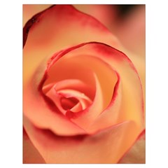 Rose Orange Rose Blossom Bloom Drawstring Bag (large) by Celenk