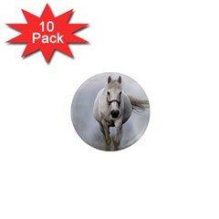 Horse Mammal White Horse Animal 1  Mini Magnet (10 Pack)  by Celenk