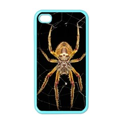 Nsect Macro Spider Colombia Apple Iphone 4 Case (color) by Celenk