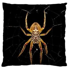 Nsect Macro Spider Colombia Large Flano Cushion Case (two Sides) by Celenk