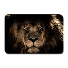 African Lion Mane Close Eyes Plate Mats by Celenk