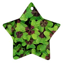 Luck Klee Lucky Clover Vierblattrig Ornament (star) by Celenk