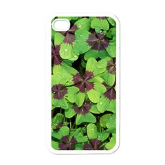 Luck Klee Lucky Clover Vierblattrig Apple Iphone 4 Case (white) by Celenk