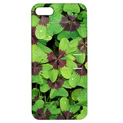 Luck Klee Lucky Clover Vierblattrig Apple Iphone 5 Hardshell Case With Stand
