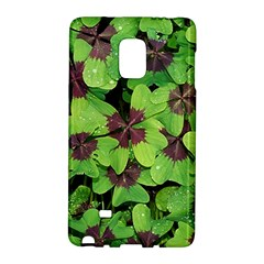Luck Klee Lucky Clover Vierblattrig Galaxy Note Edge by Celenk