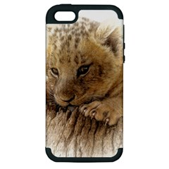 Lion Cub Close Cute Eyes Lookout Apple Iphone 5 Hardshell Case (pc+silicone) by Celenk