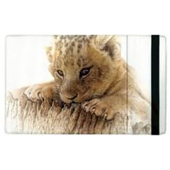 Lion Cub Close Cute Eyes Lookout Apple Ipad 2 Flip Case