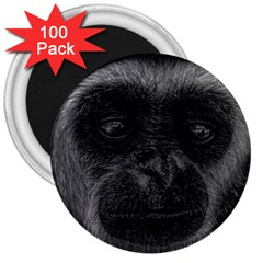 Gibbon Wildlife Indonesia Mammal 3  Magnets (100 Pack) by Celenk