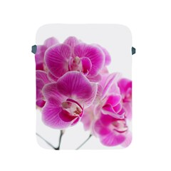 Orchid Phaleonopsis Art Plant Apple Ipad 2/3/4 Protective Soft Cases by Celenk