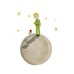 The Little Prince Shower Curtain 48  X 72  (small)  by Valentinaart