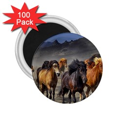 Horses Stampede Nature Running 2 25  Magnets (100 Pack)  by Celenk