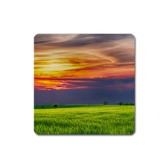 Countryside Landscape Nature Rural Square Magnet by Celenk