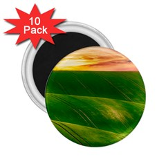 Hills Countryside Sky Rural 2 25  Magnets (10 Pack)