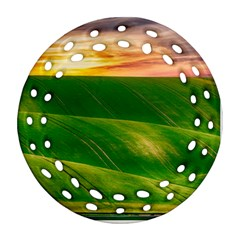 Hills Countryside Sky Rural Ornament (round Filigree)