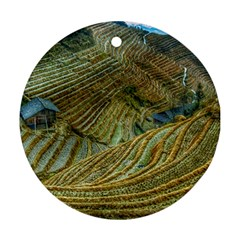 Rice Field China Asia Rice Rural Round Ornament (two Sides) by Celenk