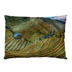 Rice Field China Asia Rice Rural Pillow Case by Celenk