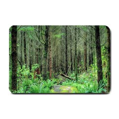 Forest Woods Nature Landscape Tree Small Doormat  by Celenk