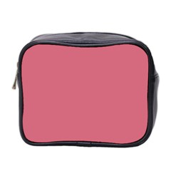 Rosey Mini Toiletries Bag 2 Side by snowwhitegirl
