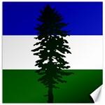 Flag of Cascadia Canvas 20  x 20   20 x20 Canvas - 1