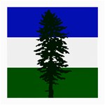 Flag of Cascadia Medium Glasses Cloth Front