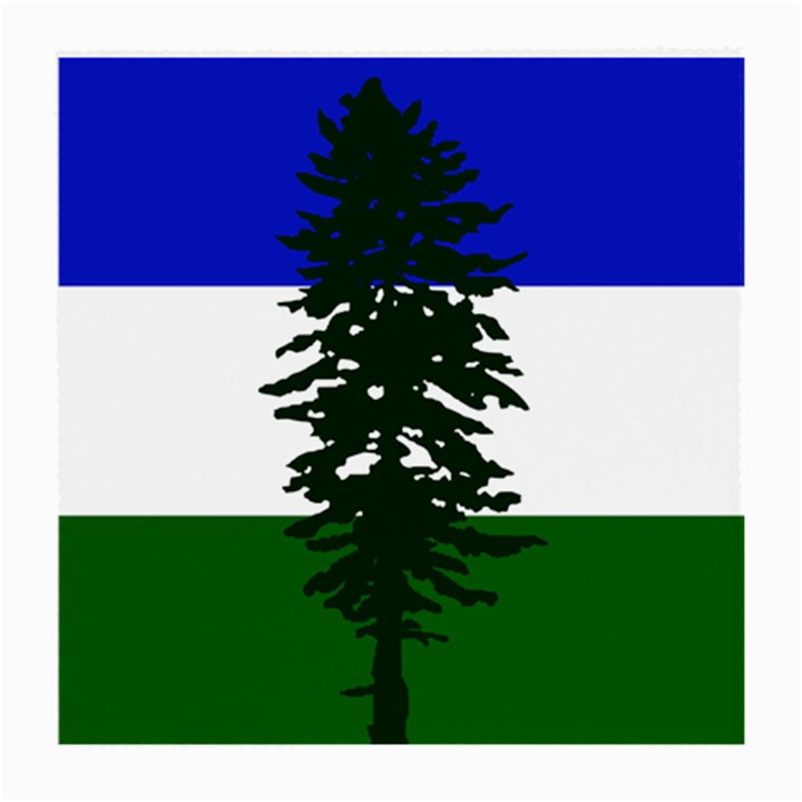 Flag of Cascadia Medium Glasses Cloth