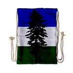 Flag of Cascadia Drawstring Bag (Small) Back