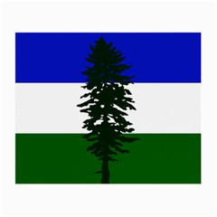 Flag Of Cascadia Small Glasses Cloth by abbeyz71