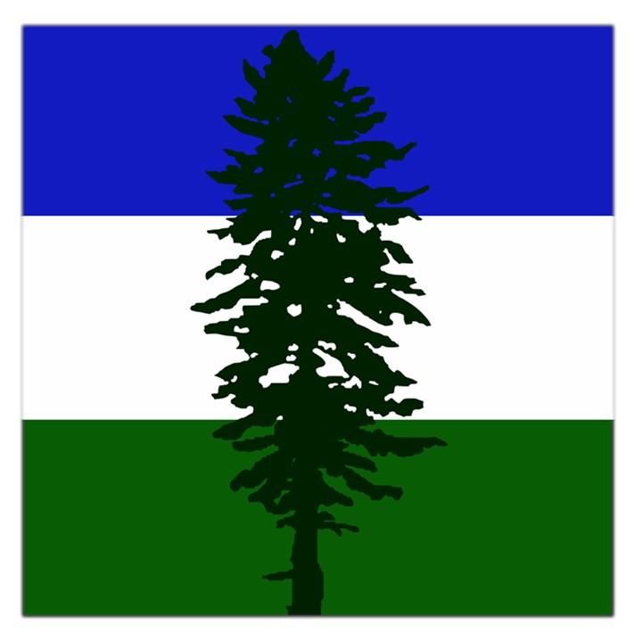 Flag of Cascadia Large Satin Scarf (Square)