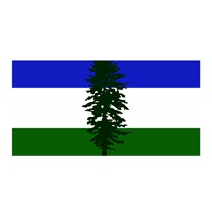 Flag Of Cascadia Satin Wrap by abbeyz71